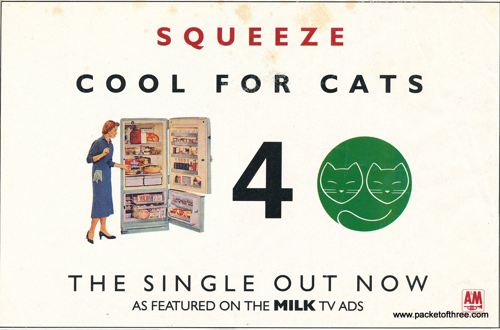 Cool For Cats advert