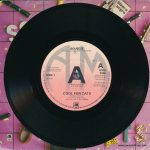 "Cool For Cats - UK - 7"" - picture sleeve promo"